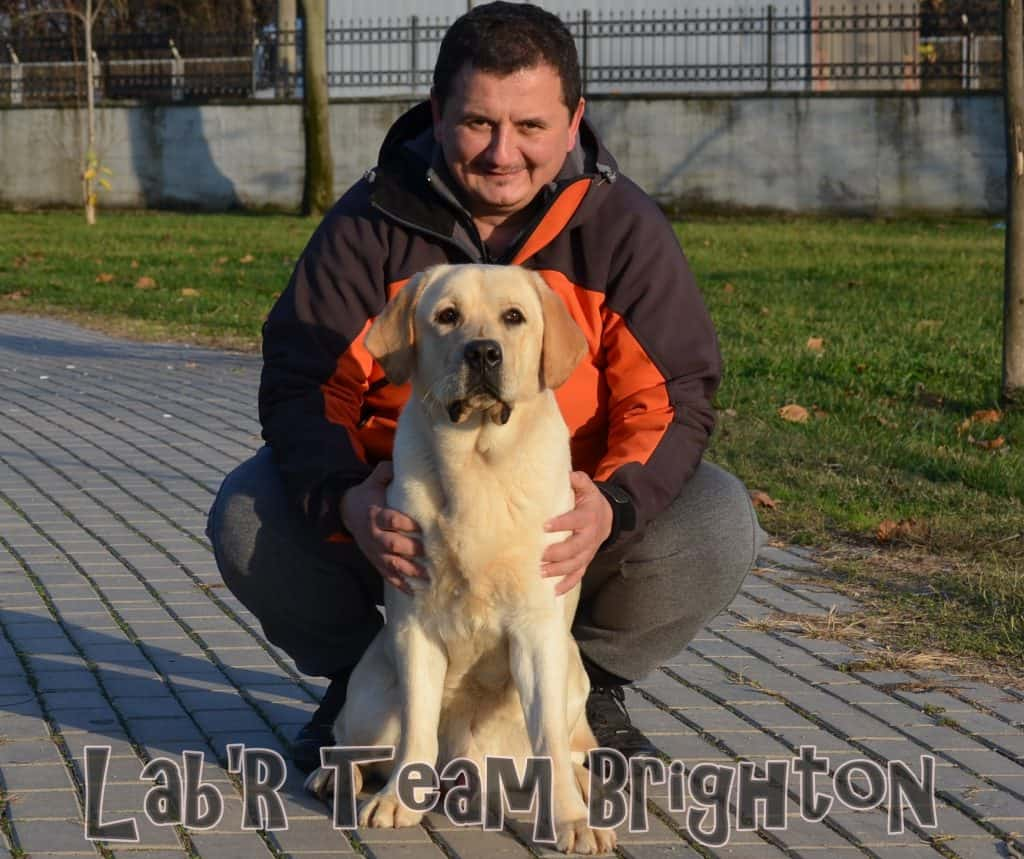 Lab'R Team Brighton