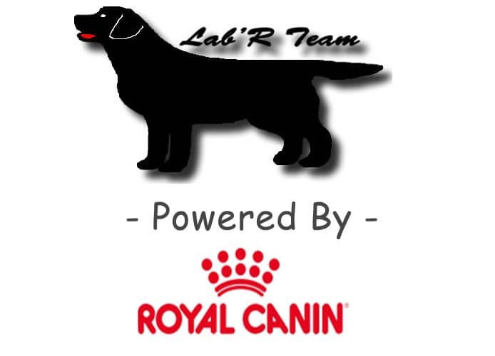sponsor royal canin